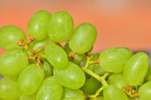 grapes-1281423_640.jpg